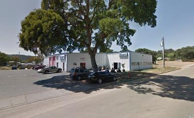 Lake County Commercial For Sale: 15875 Dam Road #Ext