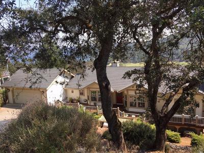 Kelseyville Single Family Home For Sale: 2570 Westlake Drive