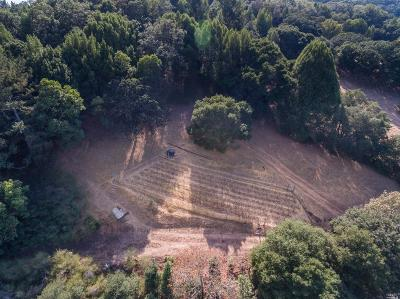 Sonoma County Residential Lots & Land For Sale: 3473 Parker Hill Road
