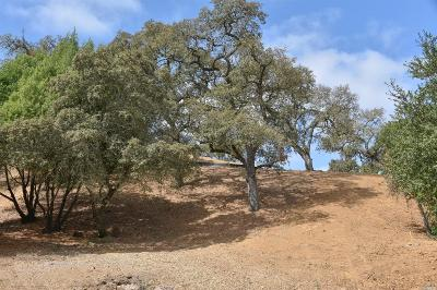Napa Residential Lots & Land For Sale: 1141 Stonybrook Court