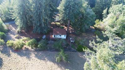 Sebastopol Single Family Home For Sale: 11464 Occidental Road