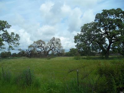 Santa Rosa Residential Lots & Land For Sale: S. Wright Road