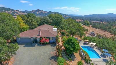 Santa Rosa Single Family Home For Sale: 2700 Amber Lane