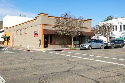 Mendocino County Commercial For Sale: 116 South State Street