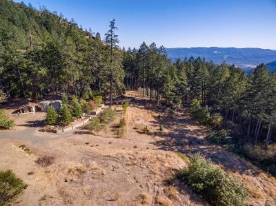 Calistoga Residential Lots & Land For Sale: 4410 Lake County Highway