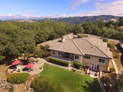 Santa Rosa Single Family Home For Sale: 3924 Flintridge Drive