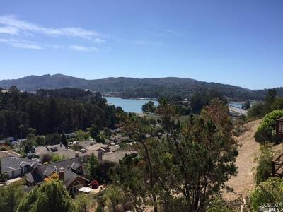 Mill Valley Single Family Home For Sale: 92 Milland Drive