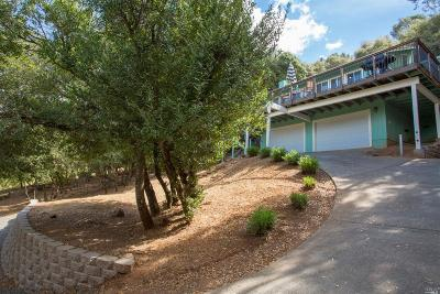 Kelseyville Single Family Home For Sale: 10099 Point Lakeview Road