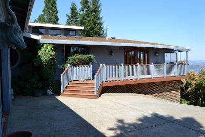 Kelseyville Single Family Home For Sale: 3715 Wood Plaza Way
