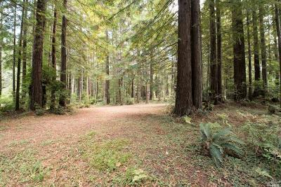 Fort Bragg Residential Lots & Land For Sale: 31940 Hwy 20