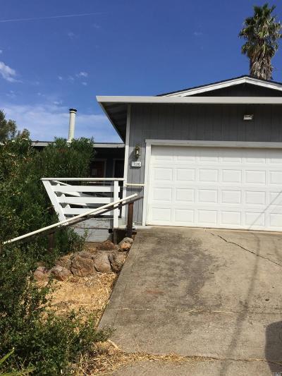 Lake County Single Family Home For Sale: 10365 Boren Bega Drive