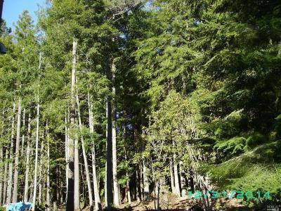 Mendocino Residential Lots & Land For Sale: Caspar Little Lake Road