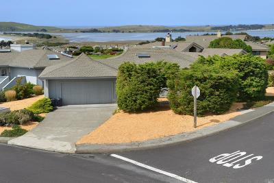 Bodega, Bodega Bay Single Family Home For Sale: 245 Condor Court