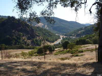 Mendocino County Farm & Ranch For Sale: 4801 Highway 20 Highway