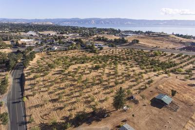 Lakeport Residential Lots & Land For Sale: 1842 Todd Road