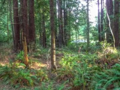 Fort Bragg Residential Lots & Land For Sale: Trillium Lane