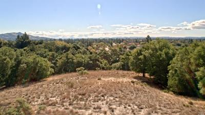 Santa Rosa Residential Lots & Land For Sale: Buena Vista Drive