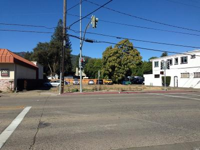 Mendocino County Residential Lots & Land For Sale: 528 North State Street