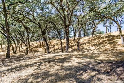 Ukiah Residential Lots & Land For Sale: Antler Road