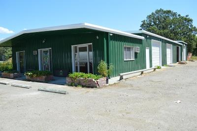 Mendocino County Commercial For Sale: 76205 Covelo Road