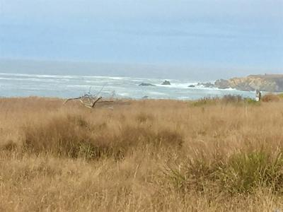 Sonoma County Residential Lots & Land For Sale: 40510 Tide Pool Road