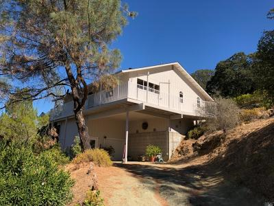 Pope Valley Single Family Home For Sale: 2528 Wagon Wheel Drive