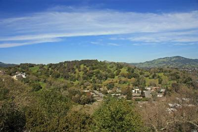 Marin County Residential Lots & Land For Sale: Oak Ridge Estate