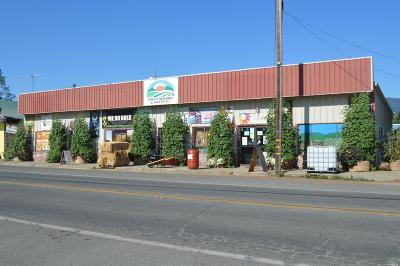 Mendocino County Commercial For Sale: 76420 Covelo Road
