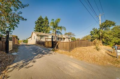 Cotati Single Family Home For Sale: 1020 Stony Glen Lane