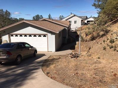 Napa County Single Family Home For Sale: 213 Lariat Street