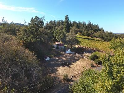 Healdsburg Single Family Home For Sale: 1357 W Dry Creek Road