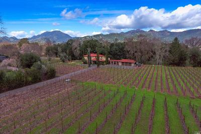 Calistoga Single Family Home For Sale: 102 Foothill Boulevard