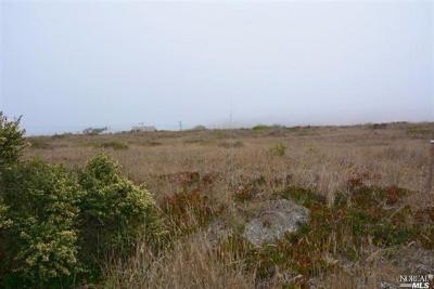 Bodega, Bodega Bay Residential Lots & Land For Sale: 415 McChristian Avenue
