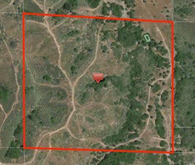 Kelseyville Residential Lots & Land For Sale: 8107 Bottle Rock Road