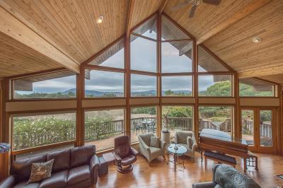 Santa Rosa Single Family Home For Sale: 4201 Burnham Court