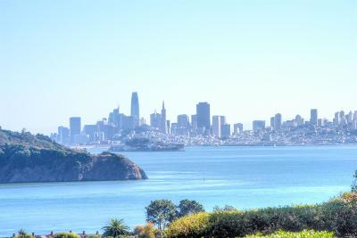 Tiburon Condo/Townhouse For Sale: 122 Red Hill Circle