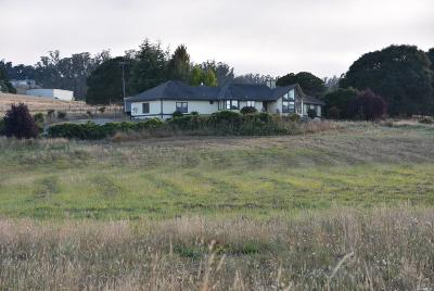 Sebastopol CA Single Family Home For Sale: $1,300,000