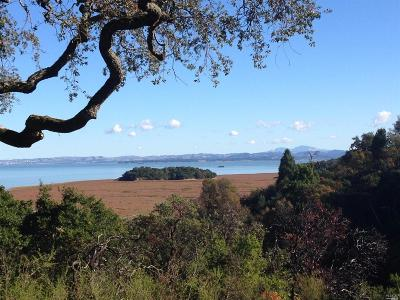 Marin County Residential Lots & Land For Sale: Upper Road