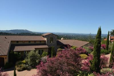 Santa Rosa Single Family Home For Sale: 3576 Kendell Hill Drive