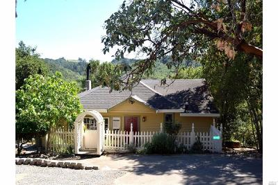 Healdsburg Single Family Home For Sale: 2156 Buena Vista Avenue