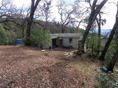 Ukiah Single Family Home For Sale: 3700 Goat Rock Road