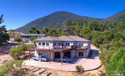 Kelseyville Single Family Home For Sale: 3510 Shoreline View Way
