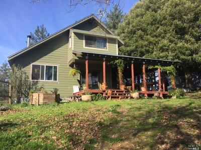 Laytonville Single Family Home For Sale: 1941 Laytonville Dos Rios Road