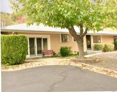 Clearlake Single Family Home For Sale: 2667 Shasta Road