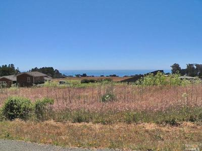 Mendocino County Single Family Home For Sale: 44290 O Rorey S Roost Drive