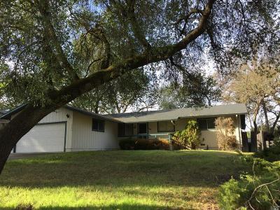Kelseyville Single Family Home For Sale: 5596 Oak Ridge Drive