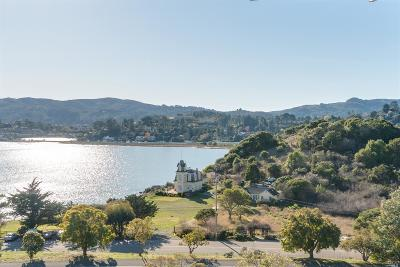 Tiburon Condo/Townhouse For Sale: 14 Janet Way #151