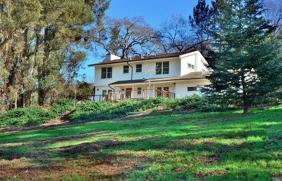 Napa Single Family Home For Sale: 1166 2nd Avenue