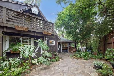 Mill Valley Single Family Home For Sale: 35 Ridge Avenue