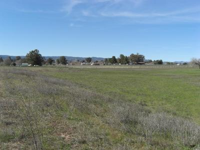 Vacaville Residential Lots & Land For Sale: 7481 Locke Road